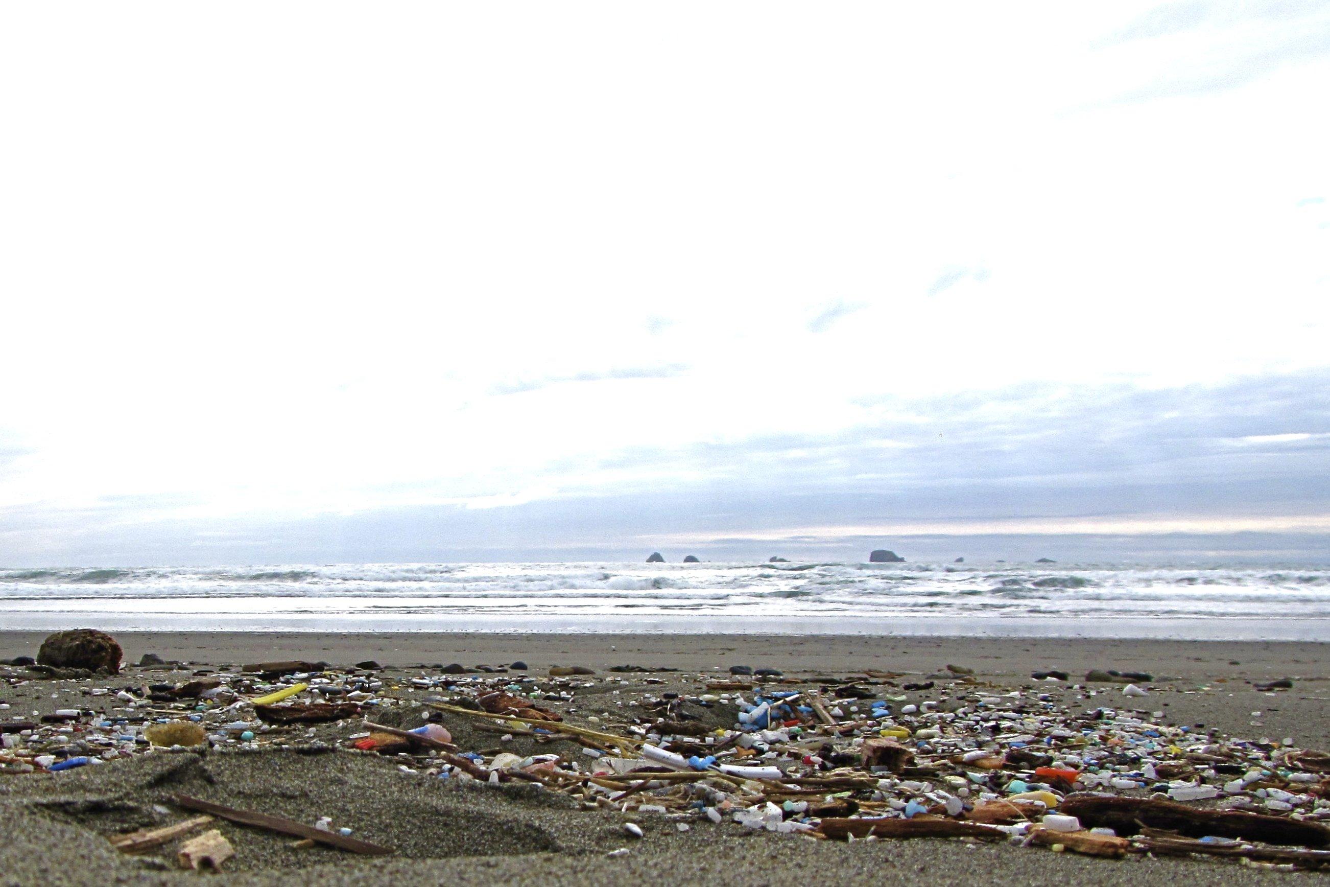 Washed Ashore 2